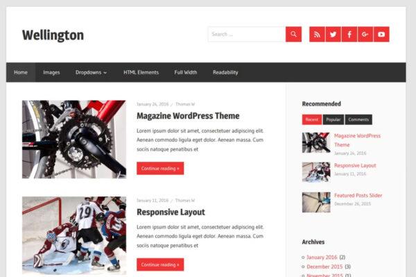 wellington AMP compatible WordPress theme