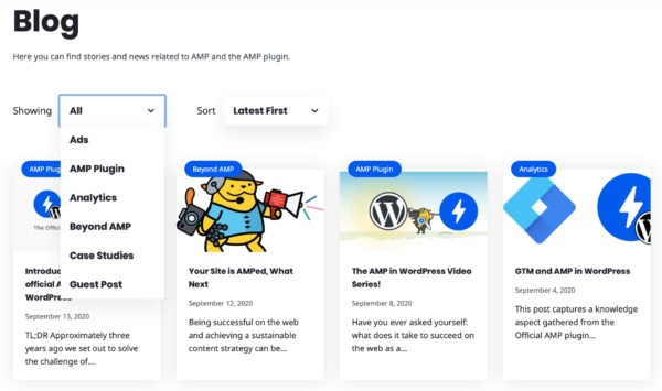 AMP WP Blog Page Filters